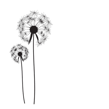 dandelion abstract: Abstract Dandelion Background Vector Illustration   Illustration