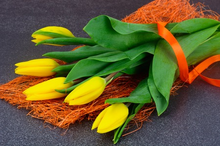 superb: Set of Yellow tulips on Dark Background Stock Photo