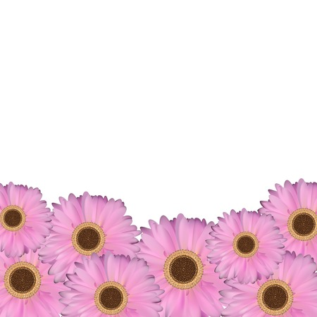 gerbera: Gerbera Flower Natural Background Vector Illustration EPS10