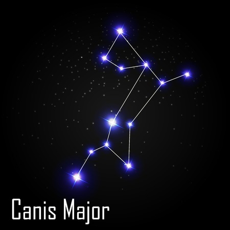 Canis Major Constellation with Beautiful Bright Stars on the Background of Cosmic Sky Vector Illustration EPS10