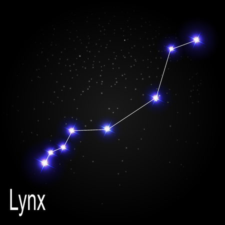 starbright: Lynx Constellation with Beautiful Bright Stars on the Background of Cosmic Sky Vector Illustration EPS10