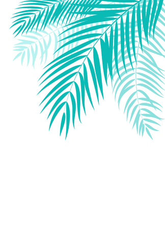 Beautiful Palm Tree Leaf  Silhouette Background Vector Illustration Vettoriali
