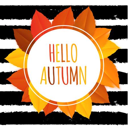 Shiny Hello Autumn Natural Leaves Background. Vector Illustration Illustration
