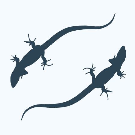 Silhouette d'un lézard qui glisse. Illustration vectorielle. Banque d'images - 84665569