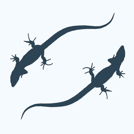 Silhouette of a lizard that creeps. Vector Illustration. Illustration