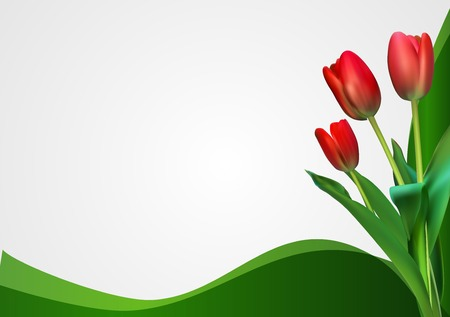 springtime background: Abstract Backgroundn with Tulips Flowers. Vector Illustration