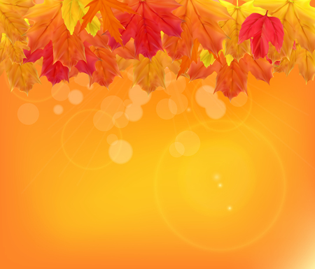 Shiny Autumn Natural Leaves Background. Vector Illustration