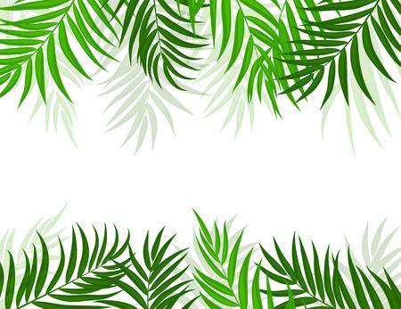 Beautiful Palm Tree Leaf Silhouette Background vector illustration. Illustration