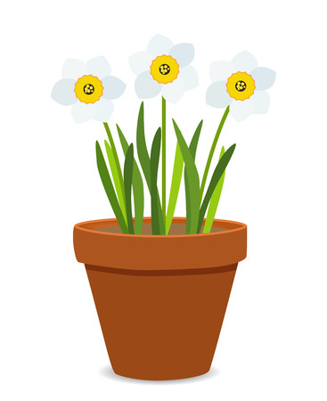 Spring Narcissus Flowers Background Vector Illustration 写真素材