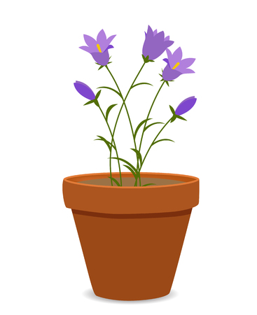 Spring Bluebell Flowers Background Vector Illustration