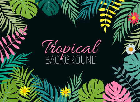 Beautiful Palm Tree Leaf  Silhouette Background Vector Illustration 矢量图像