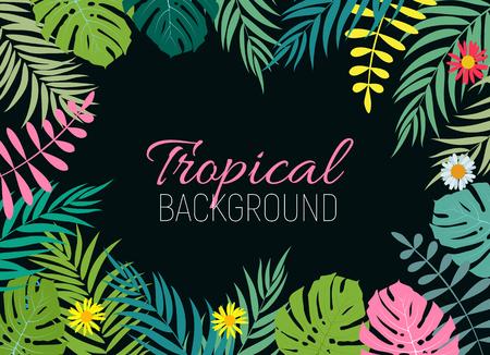 Beautiful Palm Tree Leaf  Silhouette Background Vector Illustration Illustration
