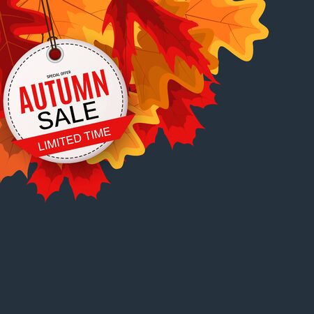 Shiny Autumn Leaves Sale Banner. Business Discount Card. Vector Illustration