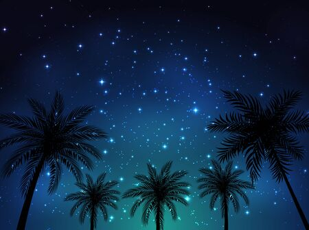 Night shining starry sky background with Palm Leaves. Vector Illustration EPS10