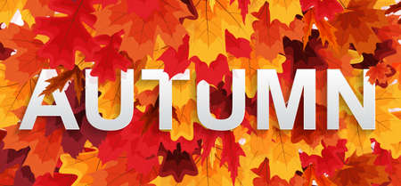 Abstract Autumn Background wiyj Falling Leaves. Vector Illustratiion EPS10
