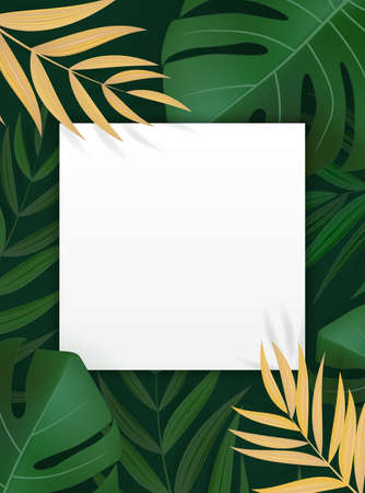 Natural Realistic Green Palm Leaf Tropical Background with Empty Blank Frame. Vector illustration Illustration