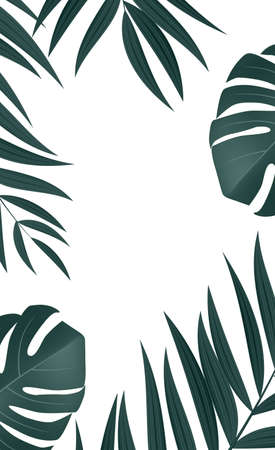 Natural Realistic Palm Leaf Tropical Background. Vector illustration Illustration