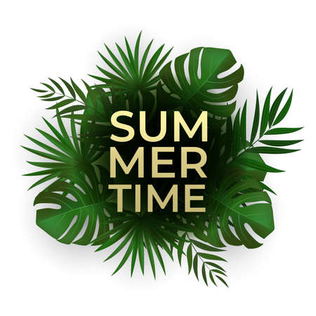 Natural Realistic Green Palm Leaf Tropical Background. Summer Time Concept. Template for advertising, web, social media and fashion ads. Vector illustration Illustration