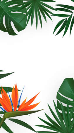 Natural Realistic Green Palm Leaf with Strelitzia Flower Tropical Background. Vector illustration