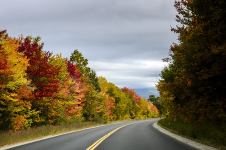 Scenic byway during fall foliage season Stockfoto