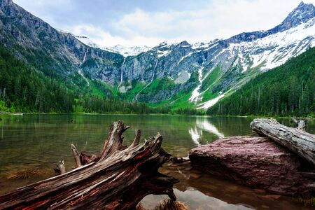 Logs on the shore of Lake Avalanche in Glacier National Park Banque d'images