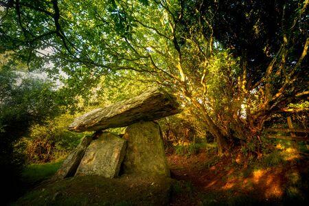 Gaulstone dolmen lays under the trees Stock fotó
