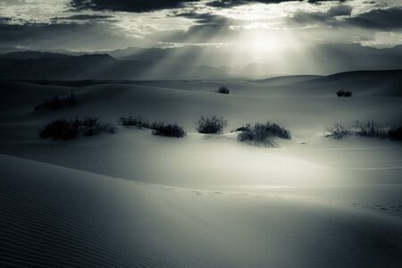 Black and white tone of sand dunes at Meesquite fileds in the de Stock Photo