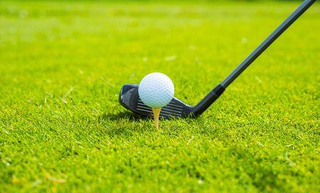 golf ball ang club on golf green grass natural fairway Stockfoto