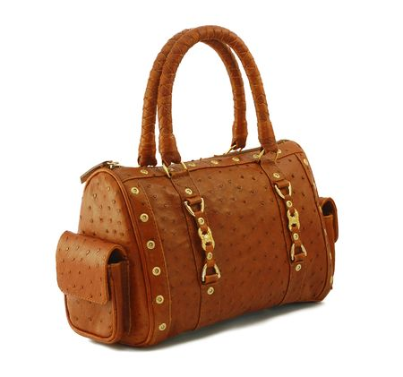 Expensive leather bag isolated