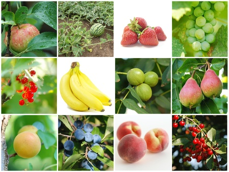 Different types of fruit made into a collage Stock Photo