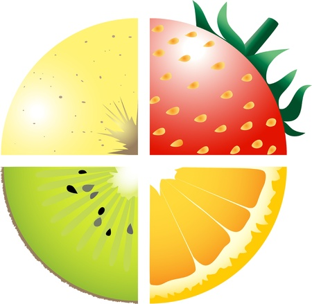 orange slice: Fruits Illustration