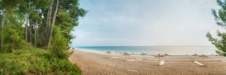 Beautiful landscape: blue sea, beach, shore with growing pine trees. Panoramic view. Stock Photo