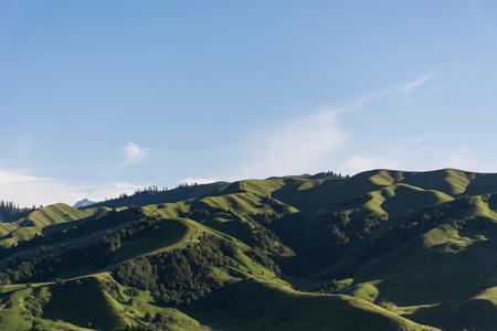 Chinese Xinjiang Yili Nalati prairie Фото со стока