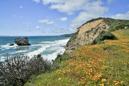 seascapes: Pacific Coastline near Arch RockBear Valley trail in Point Reyes National Seashore