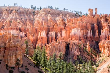 hoodoos: Midday views of Bryce Canyon National Park, Utah, USA. Close-up views of Bryce hoodoos near Navajo Loop and Rim Trail junction. Stock Photo