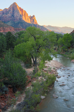 watchman: The Watchman and Virgin River from the Canyon Junction Bridge, Zion National Park, Utah, USA