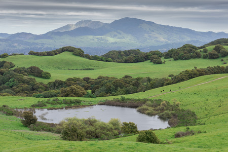mt: Mount Diablo from Briones Regional Park. Contra Costa County, California, USA.