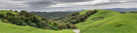 Lush Green Winter Panorama after a long drought ends in Northern California. Briones Regional Park Martinez, Contra Costa County, California, USA