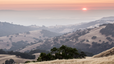 silicio: Hazy Summer Evening at Joseph D. Grant County Park, San Jose, California, USA. Foto de archivo