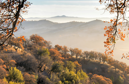 Mount Hamilton Fall of Misty Mountains. Joseph D. Grant County Park, Santa Clara County, California, USA.
