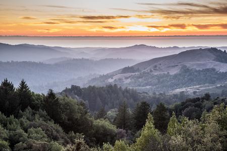 헷갈리는 숲 롤링 힐스 산타 크루즈 산의 일몰입니다. 러시아 릿지 열린 공간 보존, 산 마테오 카운티, 캘리포니아, 미국. 스톡 콘텐츠