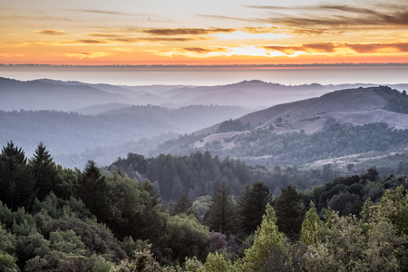 Hazy Forest Rolling Hills Ocean Sunset of Santa Cruz Mountains. Russian Ridge Open Space Preserve, San Mateo County, California, USA. Reklamní fotografie