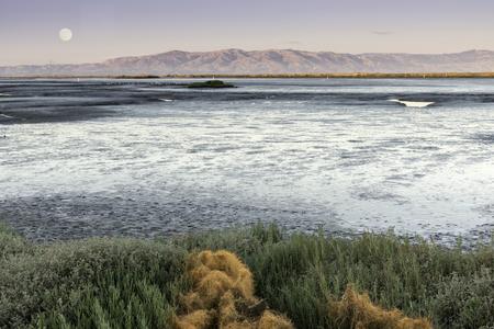 Mudflats of San Francisco Bay with full moon over Diablo Range. Santa Clara County, California, USA. Stock Photo