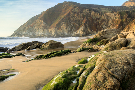 gray whale: Northern California Rugged Coastline. Gray Whale Cove State Beach, Half Moon Bay, San Mateo County, California, USA.