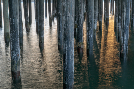 Under the Santa Cruz Wharf. Santa Cruz, California, USA.