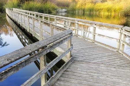 Floating Walkways at Neary Lagoon. Santa Cruz County, California, USA.