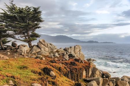 17 Mile Drive Coastal Views. Monterey County, California, USA. Stock Photo