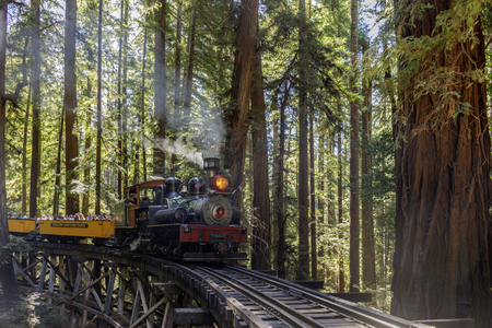 Felton, California - August 31, 2019:  Roaring Camp' Dixiana Shay Steam Train over Trestle Crossing Redwoods in Santa Cruz Mountains. Editoriali