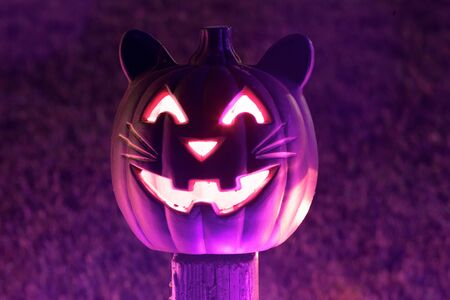 Cat Halloween Carved Pumpkin Glowing in the Dark. Halloween creepy décor outside residential house in October. Banco de Imagens