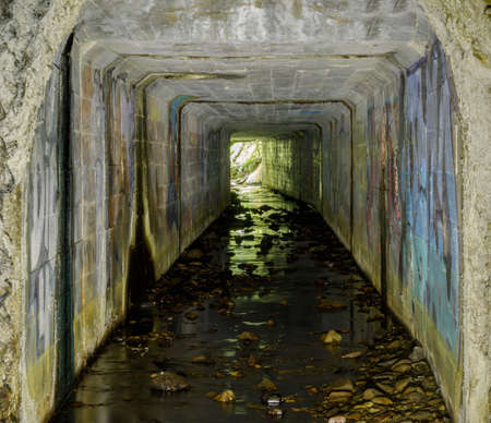 Abandoned Ocean Shore Railroad Creek Tunnel; Drainage of Yellow Bank Creek through the man-made tunnel (drilled in 1907-1908) in the Santa Cruz Mudstone.